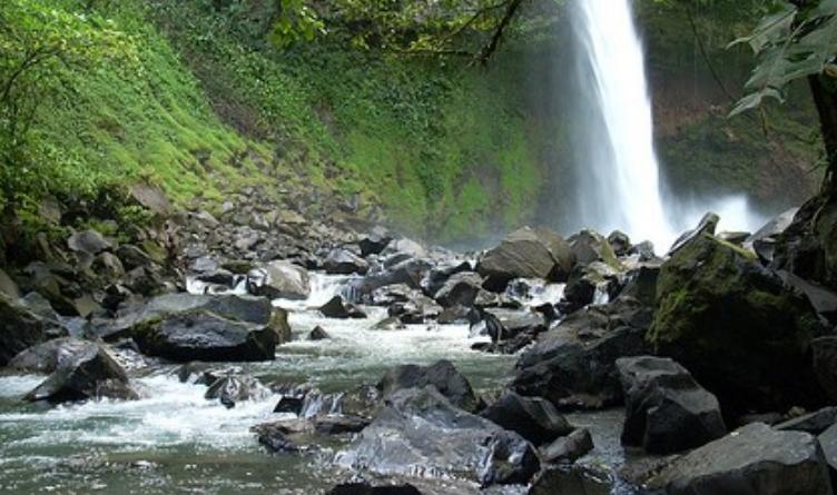 Parque Internacional La Amistad Panama